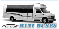 Mini Bus rental in Denver, CO